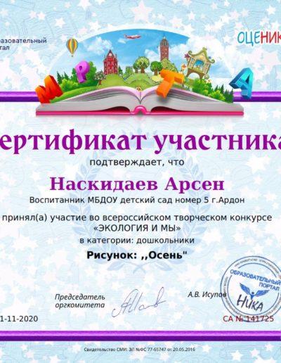 Naskidaev